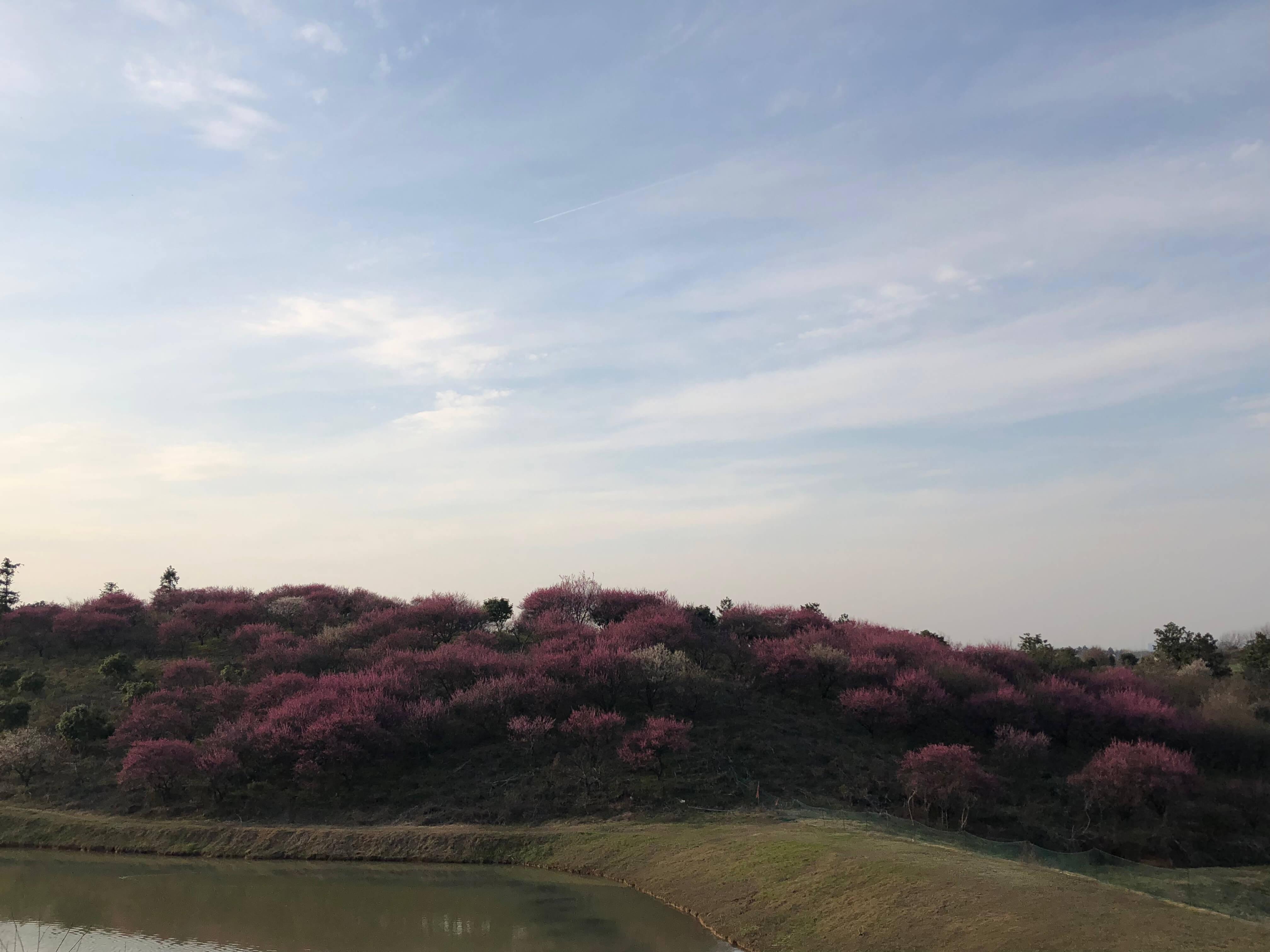2018-spring-outing (61)